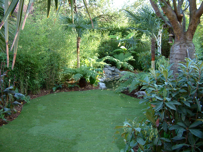 Tropical Oasis Garden and Pond Design