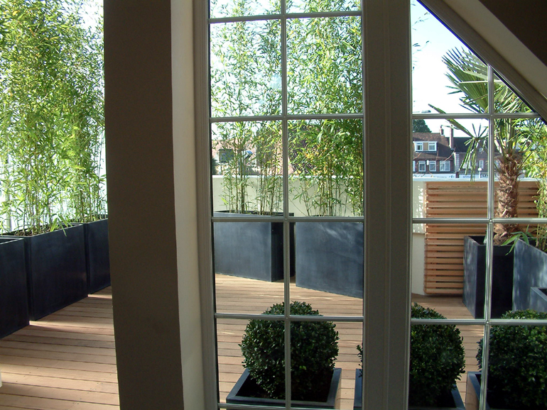 roof garden design london urban tropics - Garden Design London